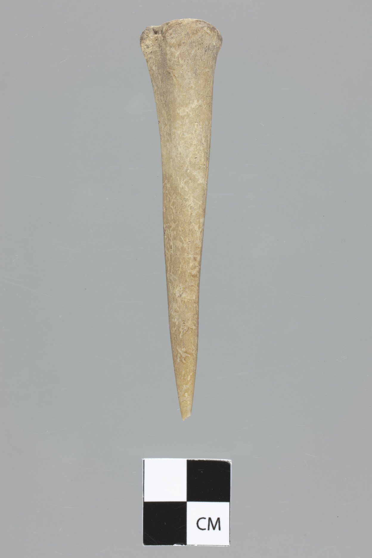 Bone Awl from the Lundeen Site, 14MD306 - 3