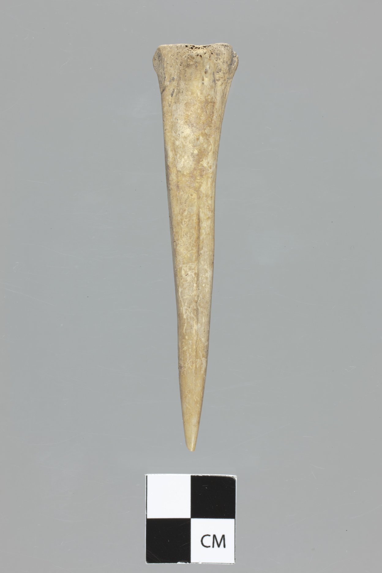 Bone Awl from the Lundeen Site, 14MD306 - 4