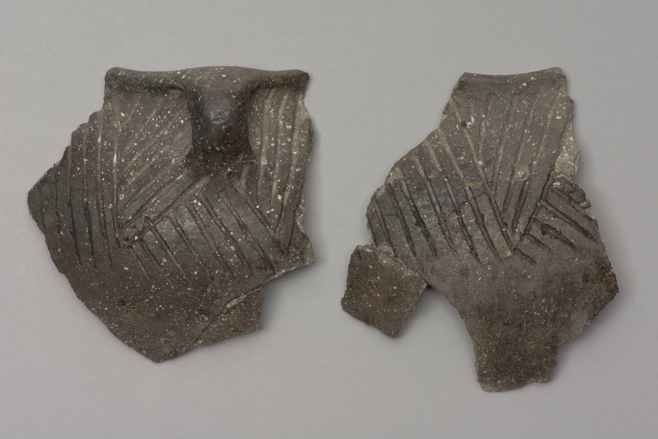 Decorated Ceramic Pot Sherds from the Minneapolis Site, 14OT5 - 2