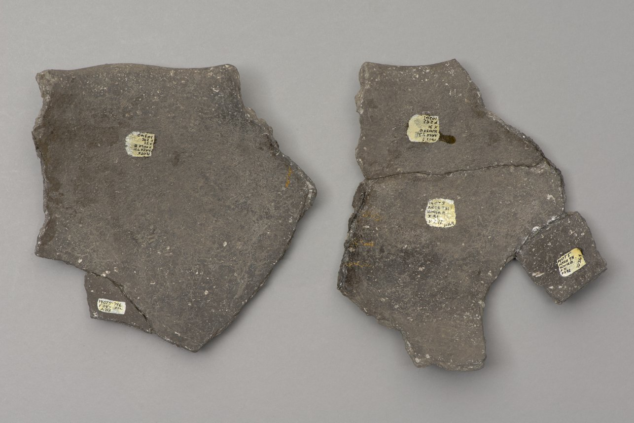 Decorated Ceramic Pot Sherds from the Minneapolis Site, 14OT5 - 3