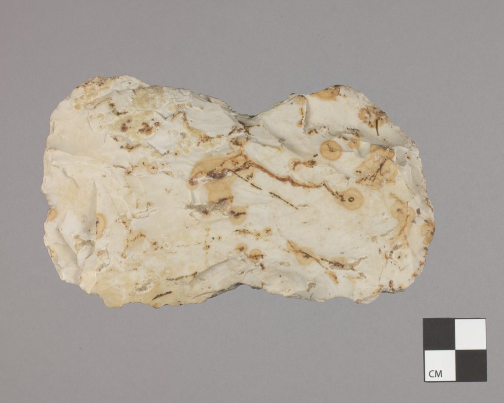 Adze or Axe from the Curry Site, 14GR301 - 2