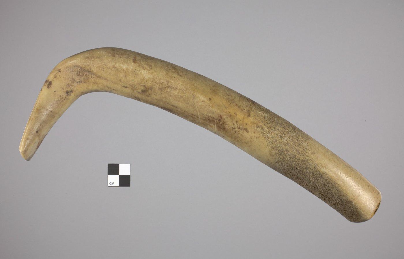 Elk Antler Scraper Handle from the Thompson Site, 14RC9 - 2