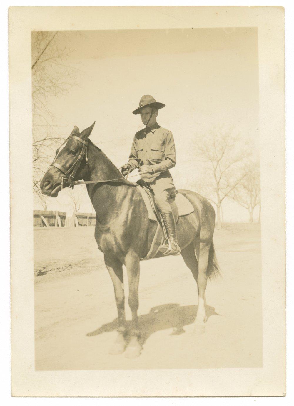 Horses and mules at Fort Riley, Kansas - 1