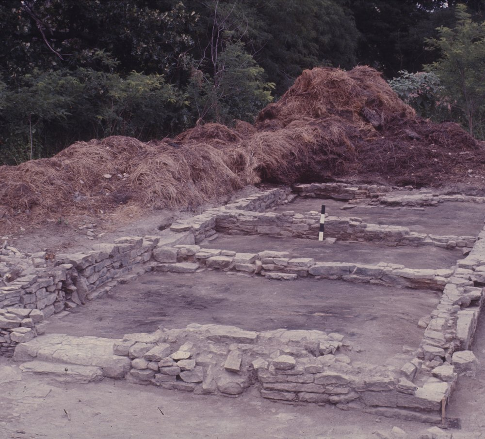 Excavations at the Baker House, 14MO701 - 3