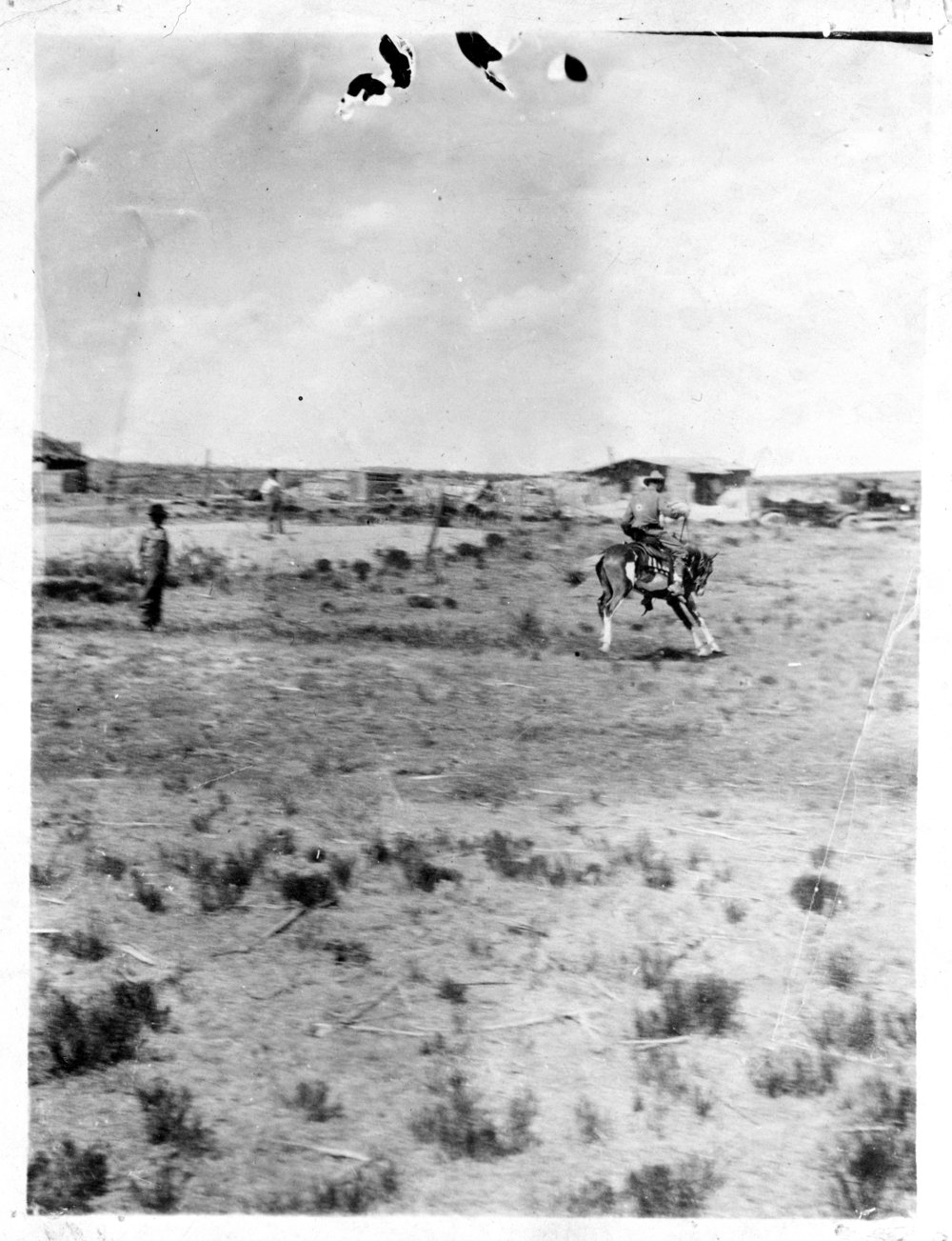 Breaking a colt, Logan County, Kansas