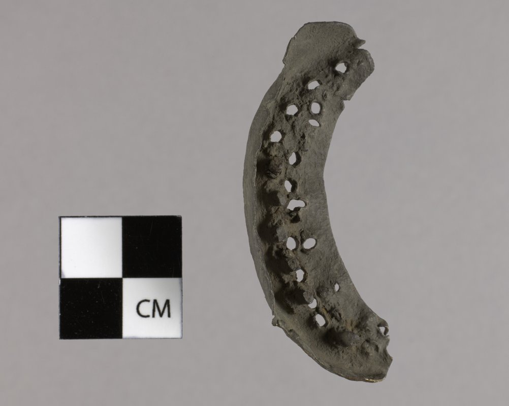 Heel Plate from the Kaw Mission, 14MO368 - 2