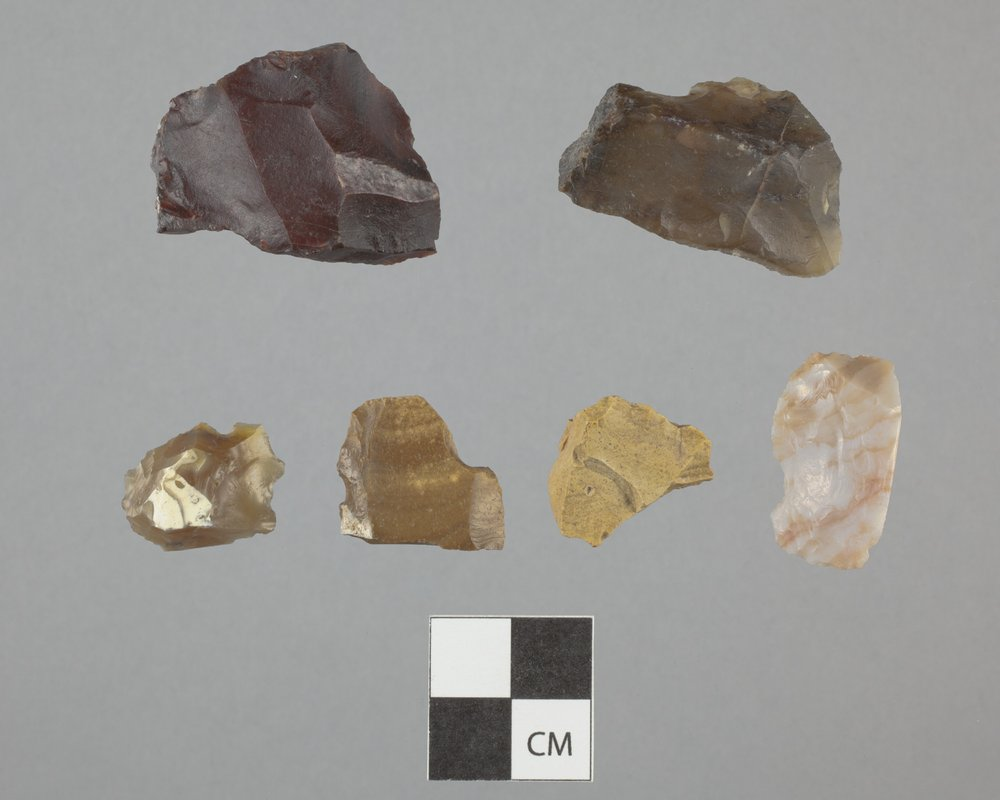 Lithic Collection from 14GL427 - 2