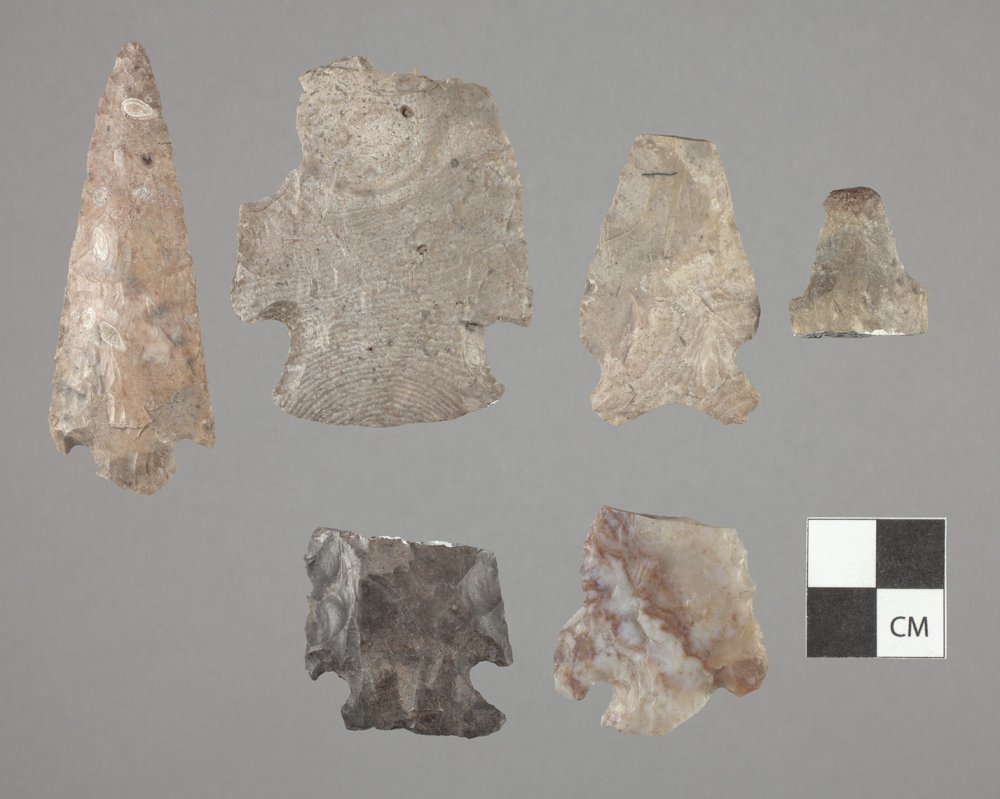 Projectile Points from 14SR311 - 2