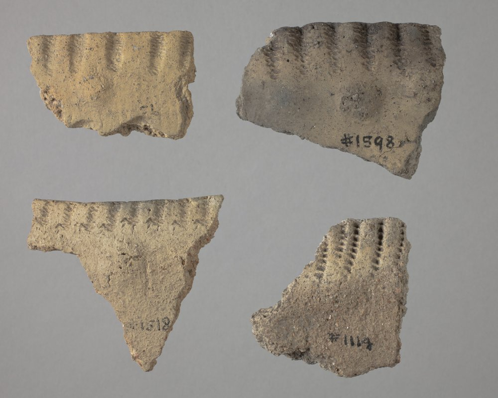 Kansas City Hopewell Rim Sherds from the Trowbridge Site, 14WY1 - 1