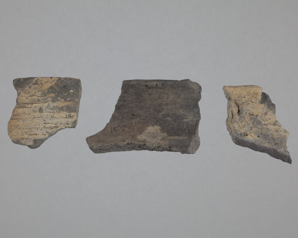 Ceramic Rim Sherds from the Wullscheleger Site, 14MH301 - 1