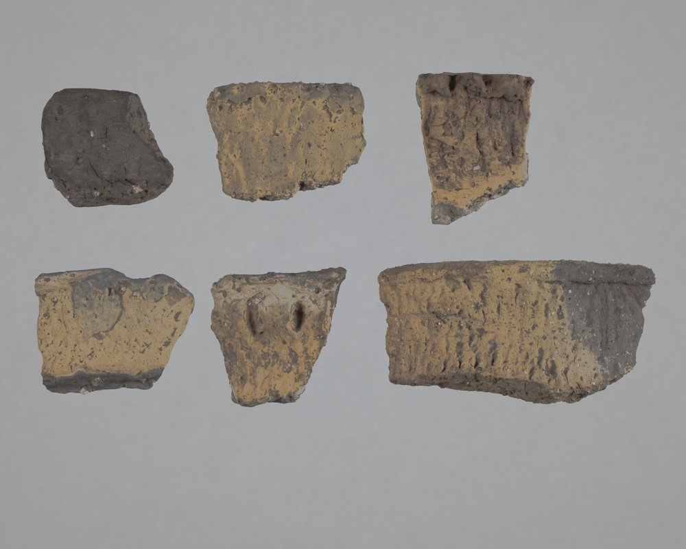Rim Sherds from the Wullschleger Site, 14MH301 - 1