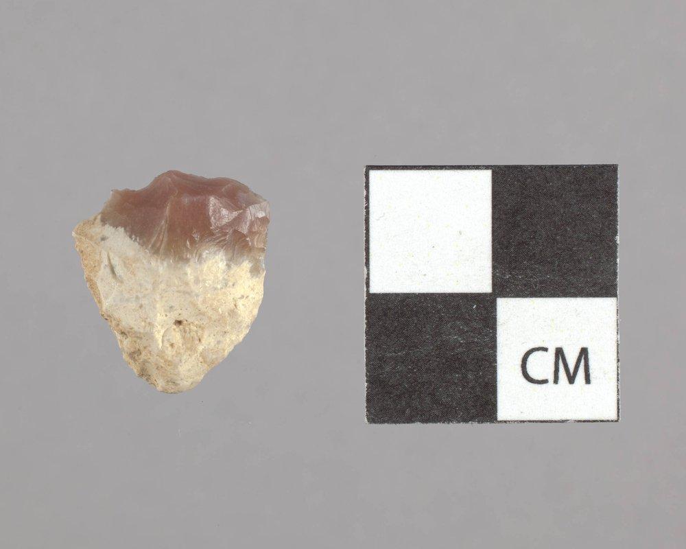 Scraper form 14GT301 - 2