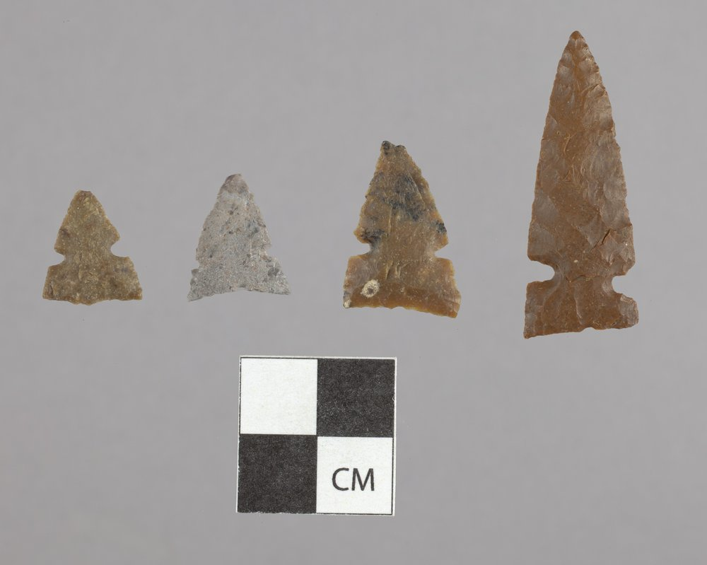 Side-Notched Arrow Points from the Tobias Site, 14RC8 - 2