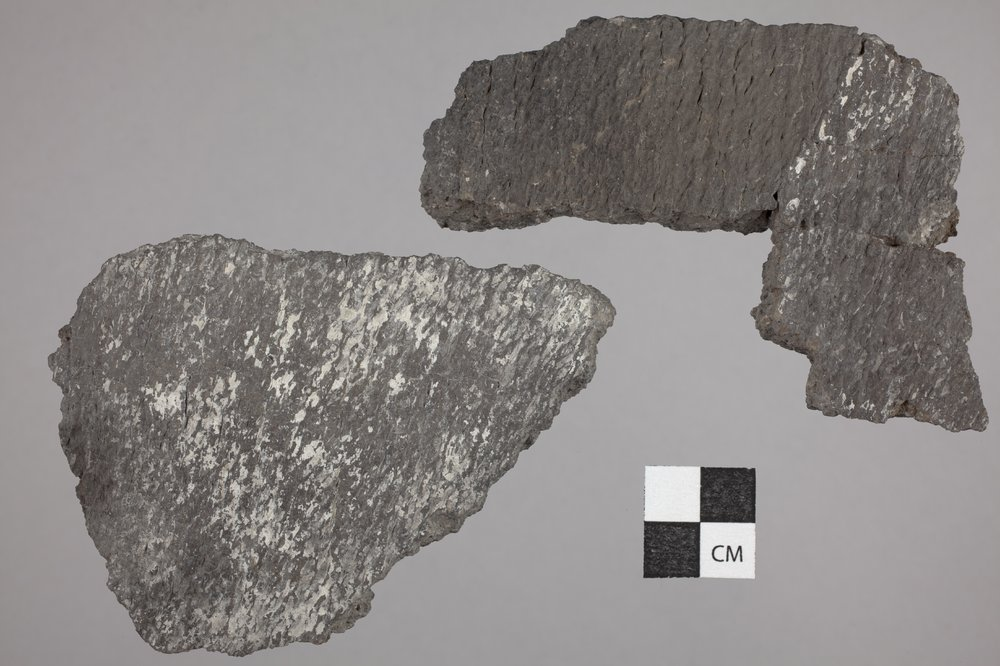 Pottery from the Forrest Site, 14PA303 - 2