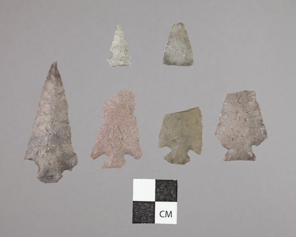Projectile Points from 14AT2 - 2