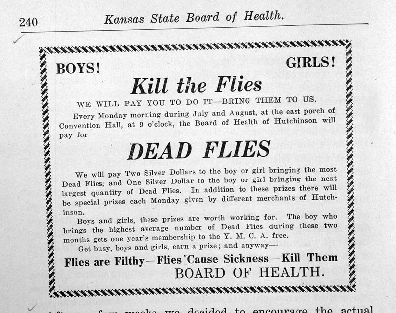 Boys! Girls! kill the flies