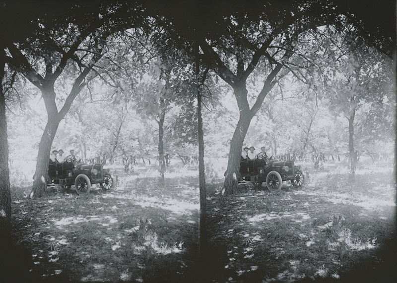 Automobile in a grove of trees, Russell County, Kansas