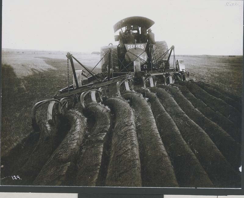 A Reeves steam tractor turning virgin sod