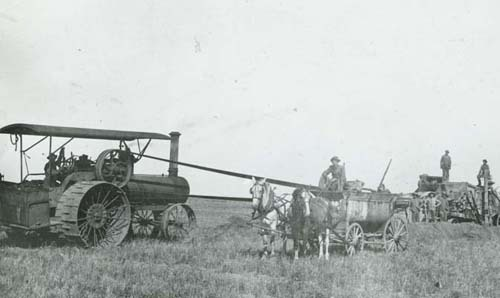 Harvesting Wheat, Seward County