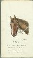 Samuel J. Reader's autobiography, volume 3 - 14