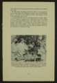 Biennial report of the Boys Industrial School, 1956 - 9