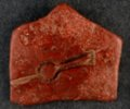 Pipestone Artifact - 3