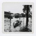 1951 flood in Manhattan, Kansas - 9