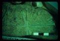 Petroglyph from 14bu339