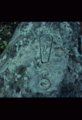 Petroglyphs from the Moore-McCollum Site, 14CO325