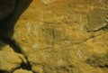 Petroglyphs from Russell County - 1
