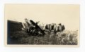 Percherons and farm woman in kaffir field, Butler County, Kansas - front