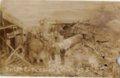 Weir, Cherokee County, Kansas - Boiler Explosion Crowe #3, 03/03/1909