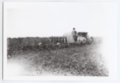 Gray tractor plowing a field, Logan County, Kansas - 3