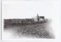 Gray tractor plowing a field, Logan County, Kansas - 3