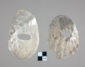 Shell Hoes from the Aerhart Site - 2