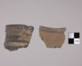 Rim Sherds from the Taylor Site, 14DP19 - 2