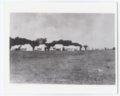 7th Cavalry Camp, Fort Hays, Kansas - 3