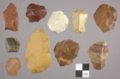 Artifacts from a Lithic Workshop, 14GO405 - 2