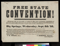Election of delegates to the Free State Convention