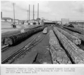 Atchison, Topeka, & Santa Fe Railway Company's tie treating plant, Somerville, Texas