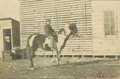 A child on horseback