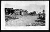 Veselik-Gannon photograph collection