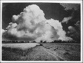 Wheat harvest in Kansas