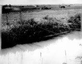 Irrigation canal, Finney County, Kansas