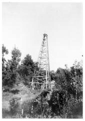 Oil wells, Wilson County, Kansas