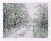 Atchison, Topeka & Santa Fe Railway Company roadbed, Elgin, Kansas.