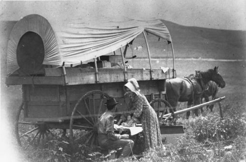 Covered wagon, Greenwood County, Kansas - Page