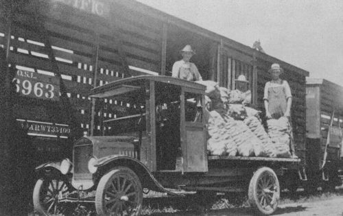 A view of three men loading sacks of Kaw Valley potatoes from a flatbed truck into box cars in Linwood, 1920s.