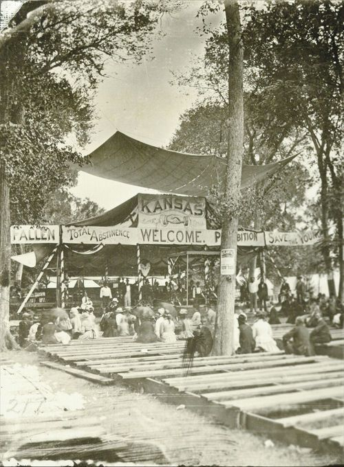 Prohibition Camp meeting at Bismarck Grove, 1878. - Page