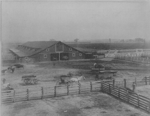 Race track and stables at the Bismarck Grove fairgrounds - Page